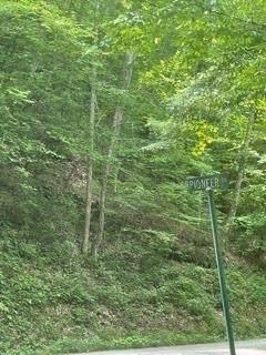 0 Dripping Springs Road, Lafayette, GA 30728 (MLS #9020598) :: Rettro Group