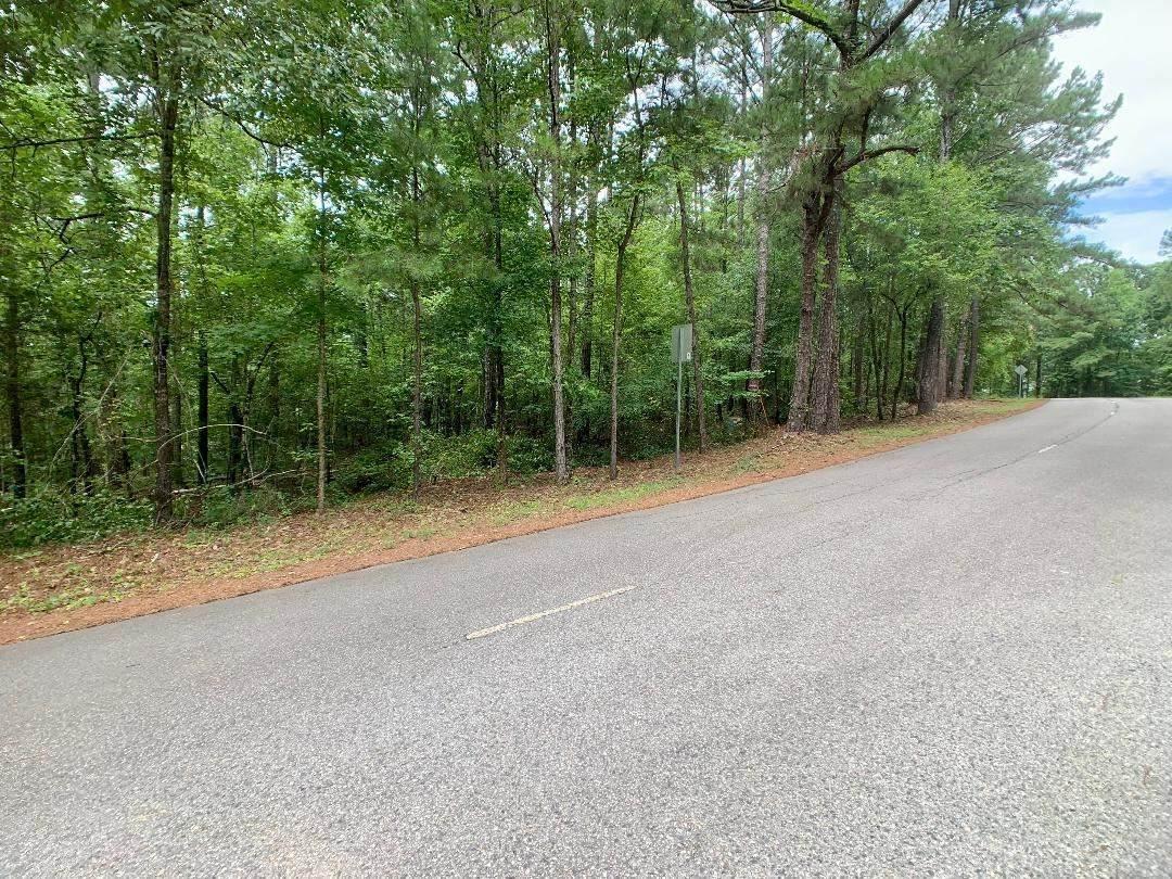 0 Warbler Lane - Photo 1