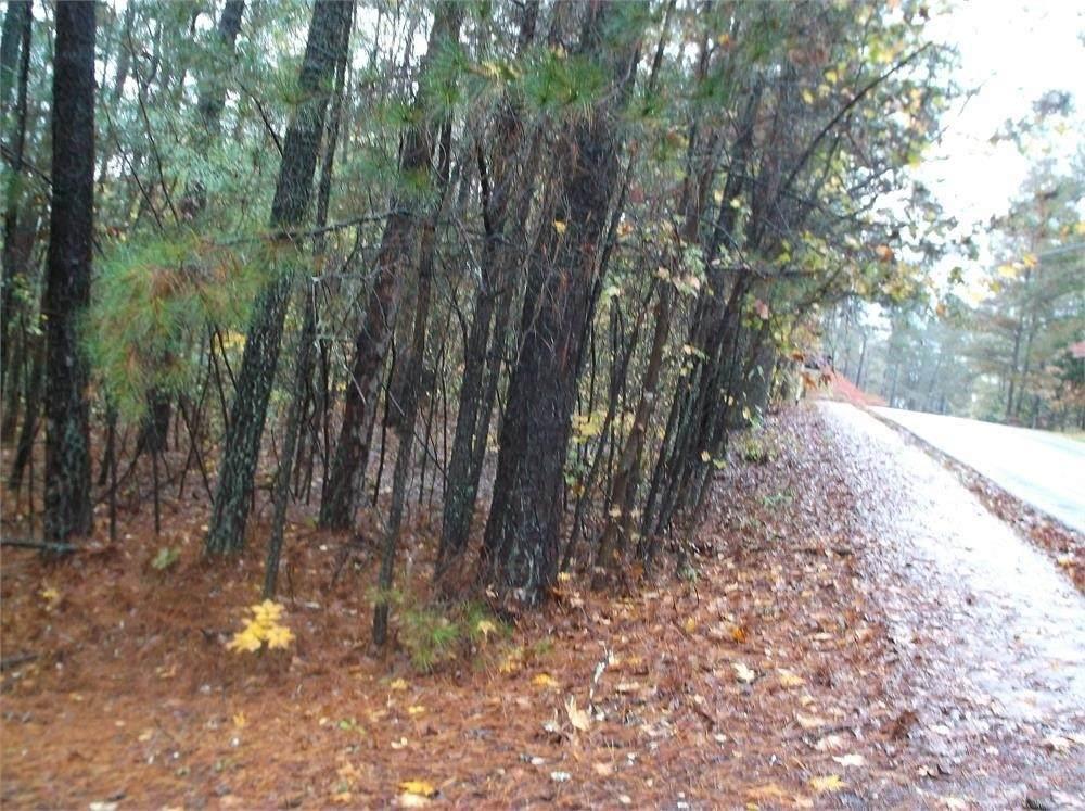 5027 Monticello - Photo 1