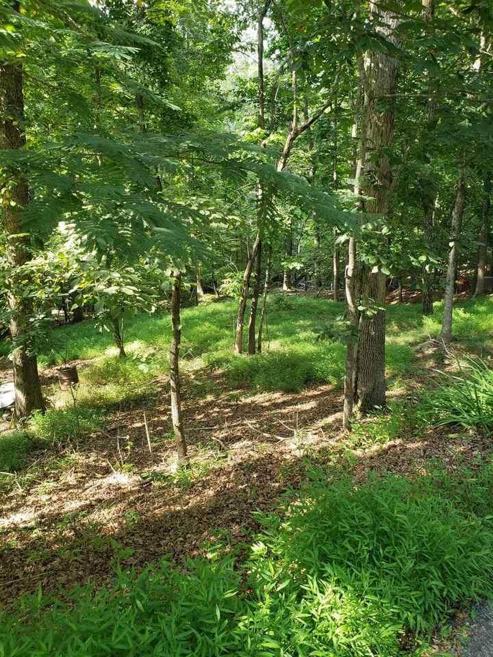 3416 Rock Ridge - Photo 1