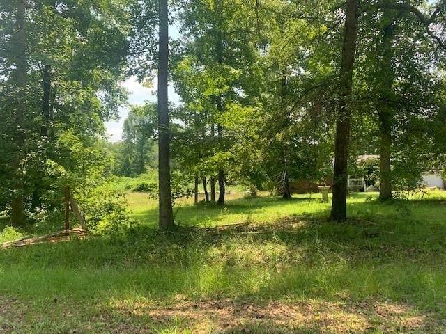 119 Willow Drive, Sparta, GA 31087 (MLS #9025320) :: Rettro Group