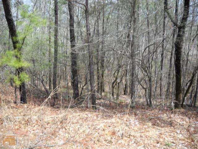 0 Deer Park Drive #169, Sparta, GA 31087 (MLS #9026926) :: Rettro Group