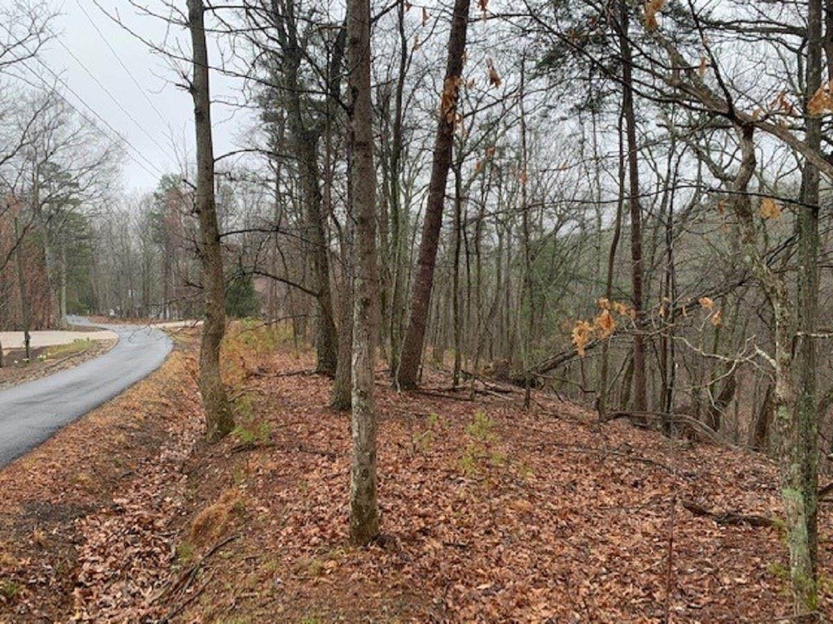 0 Sharptop Mountain Trail - Photo 1