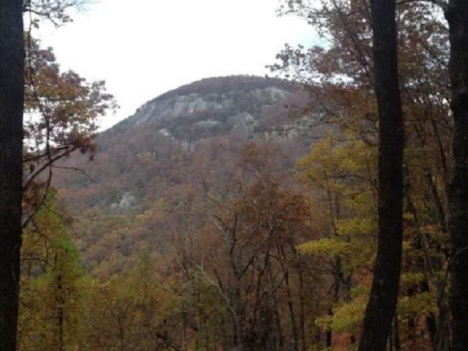 LOT 25 Mountainside - Photo 1