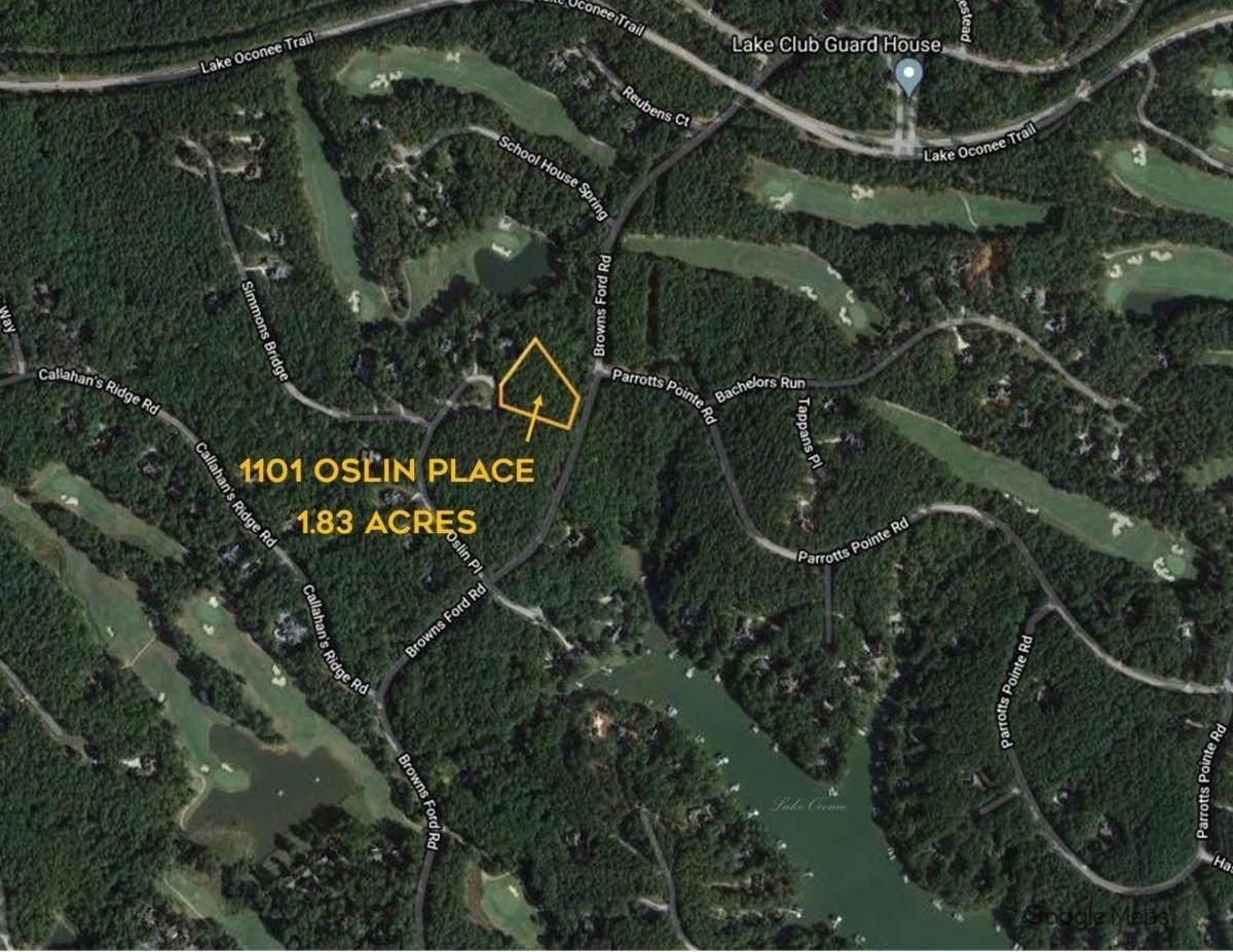 1101 Oslin Place - Photo 1