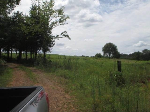 0 Two Gun Bailey Road, Taylorsville, GA 30178 (MLS #9036511) :: The Realty Queen & Team