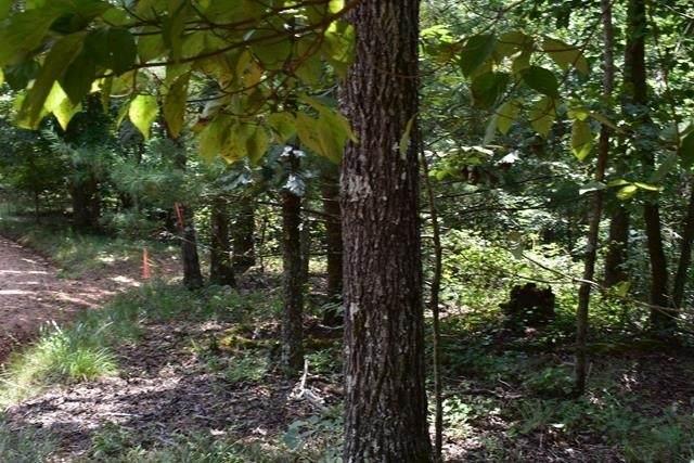 0 Fowler Creek Drive Lot 7, Cleveland, GA 30528 (MLS #9037484) :: Rettro Group
