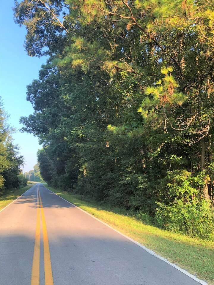 0 Hair Lake Road - Photo 1