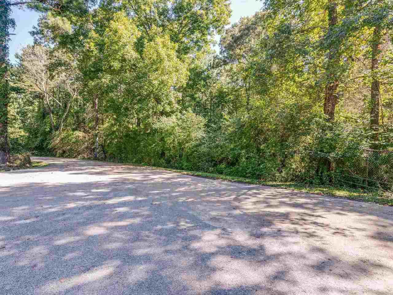 0 Pleasant Grove Road - Photo 1