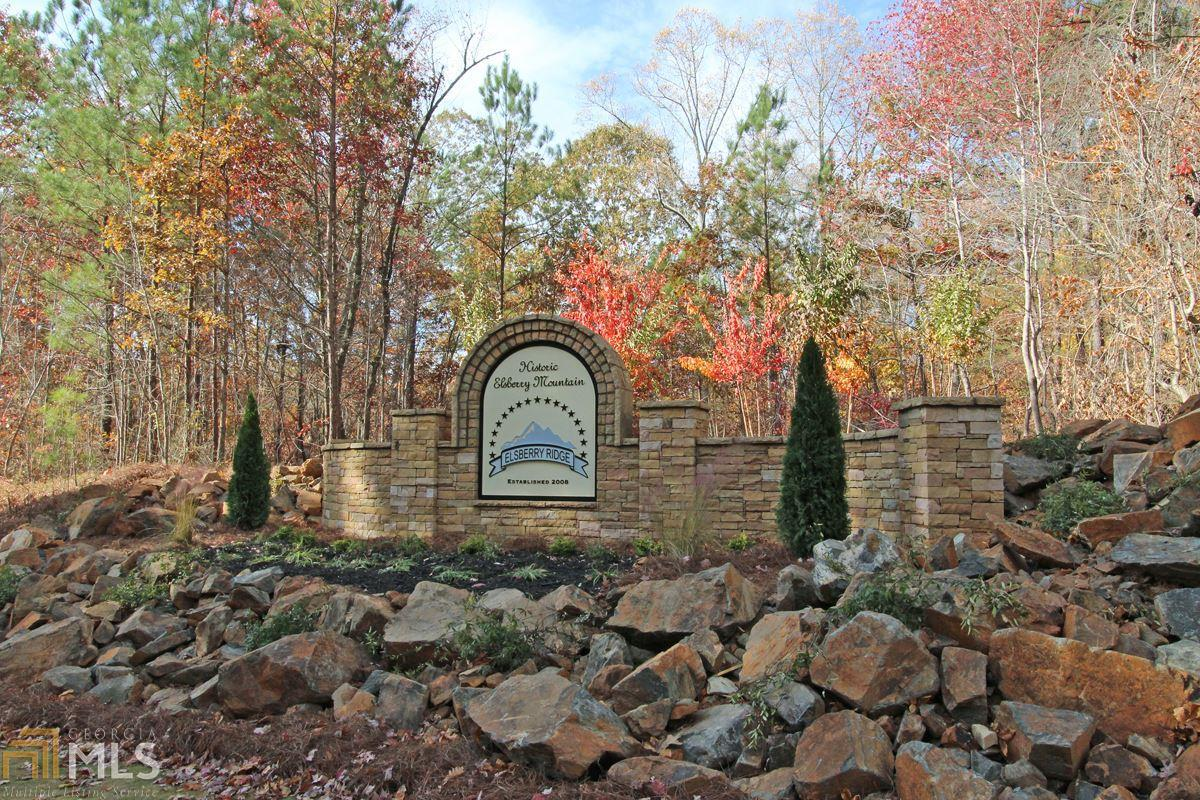 0 Elsberry Ridge Dr - Photo 1