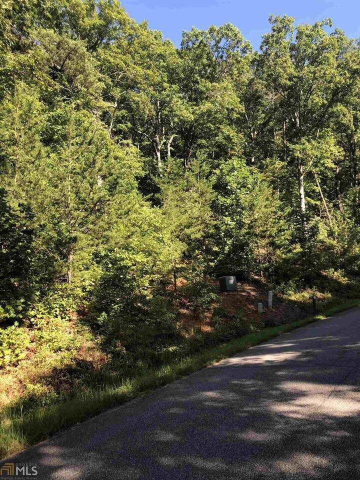 0 Long Mountain Trail - Photo 1