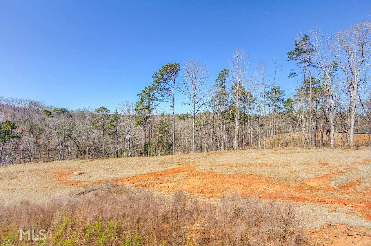 708 Middle Fork Trail - Photo 1