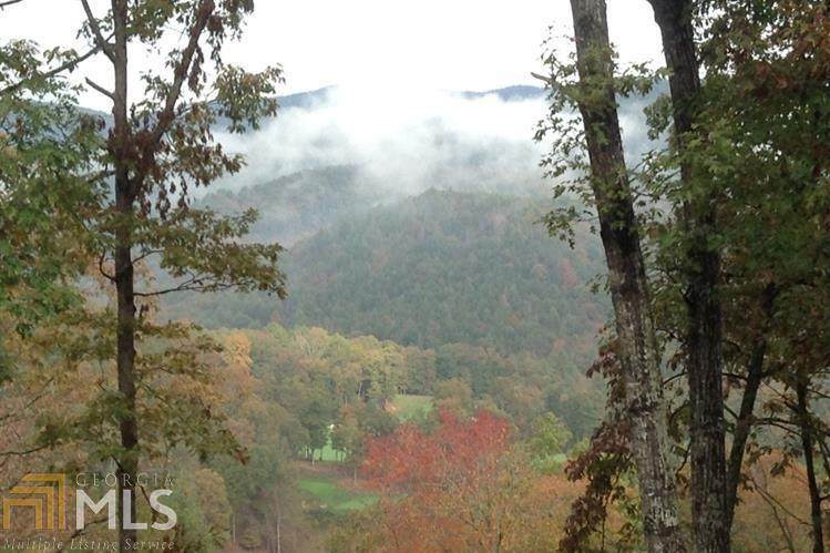 1001 Grey Fox Trail - Photo 1