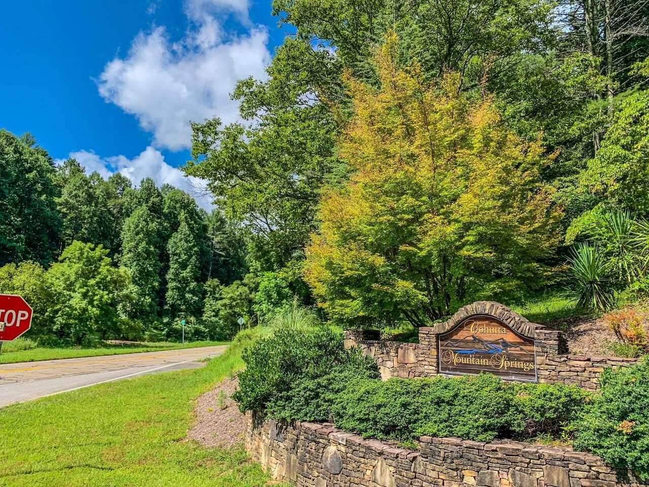 0 Mountain Springs Road - Photo 1