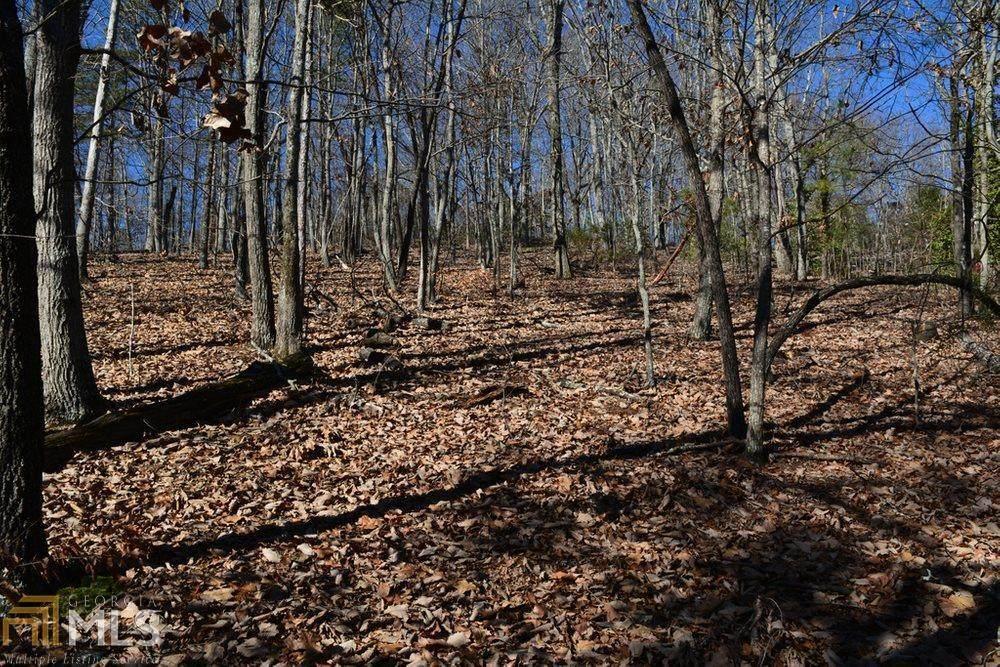 766 Fenwood Trail - Photo 1
