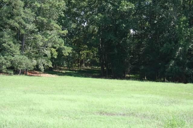 40 Meadow Trail - Photo 1
