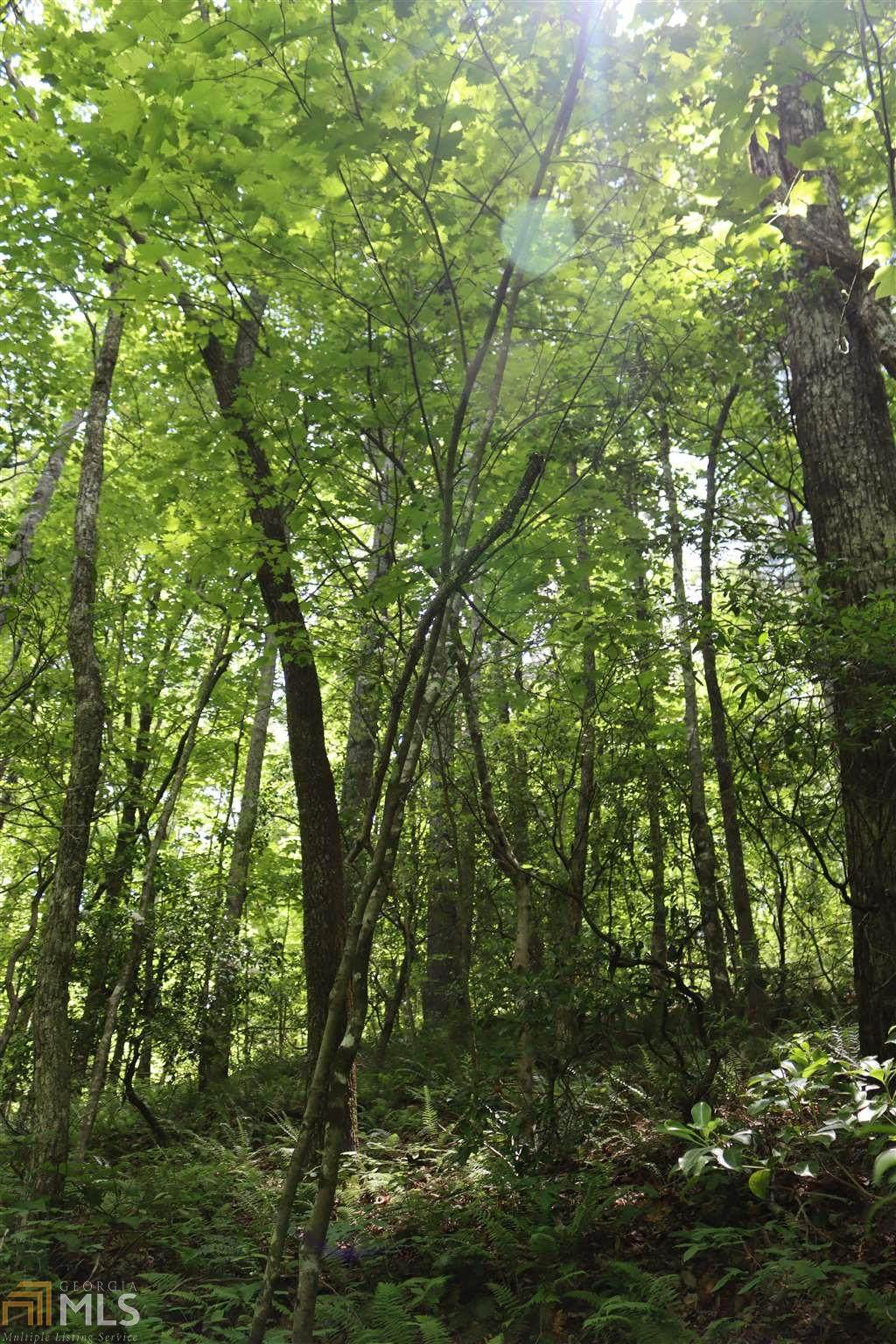 0 Covecrest Holw - Photo 1