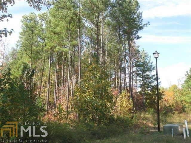 13663 Inman Rd, Hampton, GA 30228 (MLS #8791994) :: The Heyl Group at Keller Williams