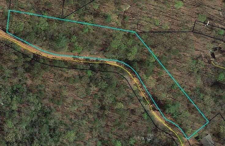 7B Bear Foot Trail - Photo 1