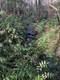 0 Pioneer Ridge - Photo 3
