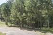 0 Hickory Lane - Photo 4