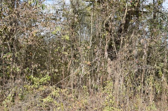 0 River, MARKSVILLE, LA 71351 (MLS #144872) :: The Trish Leleux Group