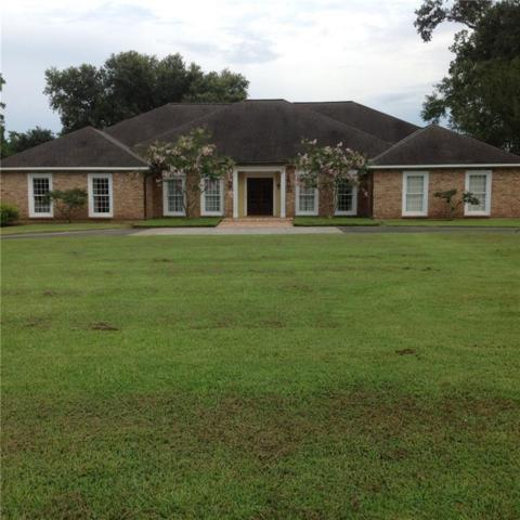 164 Anthony Grundy Road, MARKSVILLE, LA 71351 (MLS #146207) :: The Trish Leleux Group