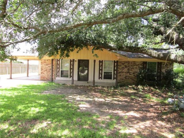 316 Camillia Street, MARKSVILLE, LA 71351 (MLS #147393) :: The Trish Leleux Group