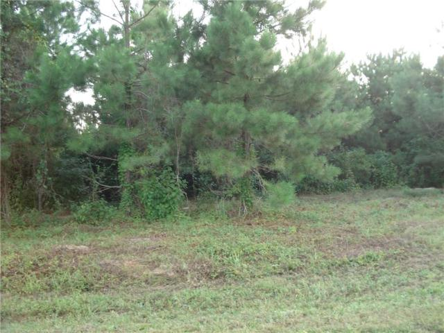 00 Magnolia Park Road, DRY PRONG, LA 71423 (MLS #148090) :: The Trish Leleux Group
