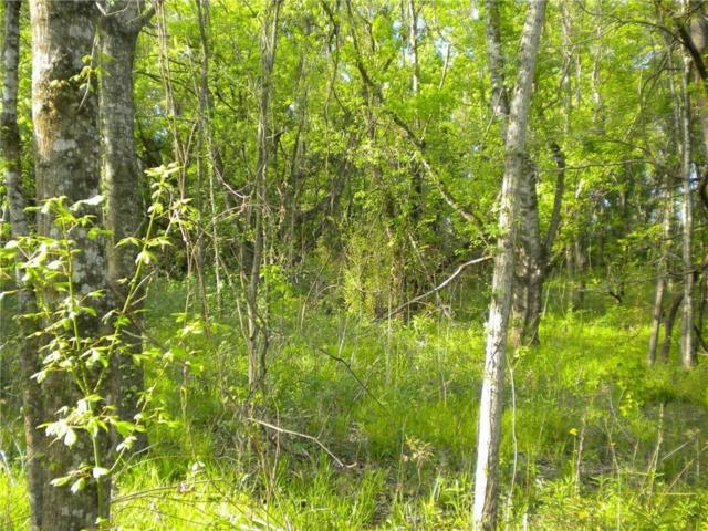 xx Mammy Trail Rd, GOLDONNA, LA 71031 (MLS #148551) :: The Trish Leleux Group