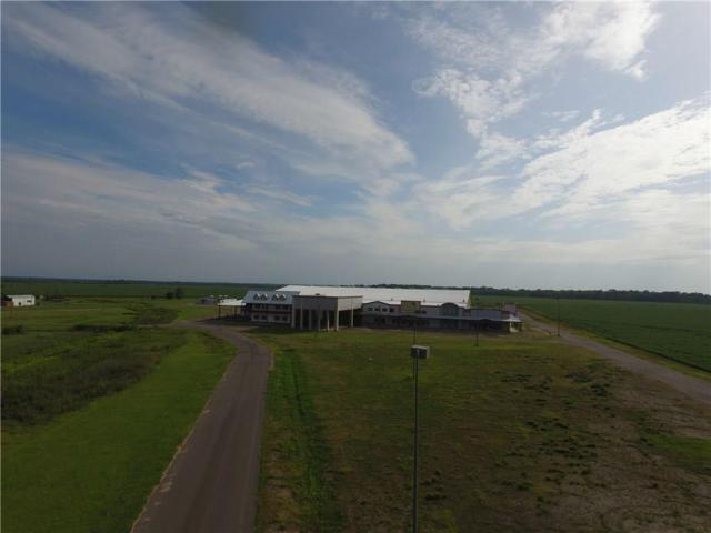 7215 Highway 1, BOYCE, LA 71409 (MLS #150149) :: The Trish Leleux Group