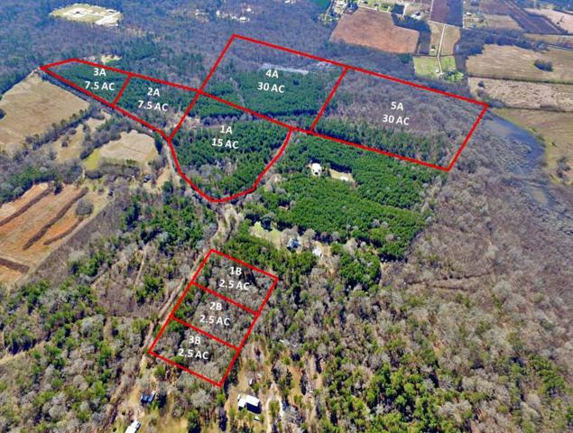 0 Willie Wells Tract 1A, DEVILLE, LA 71328 (MLS #150904) :: The Trish Leleux Group