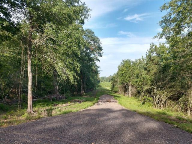 4305 Hwy. 507, COUSHATTA, LA 71019 (MLS #152558) :: The Trish Leleux Group