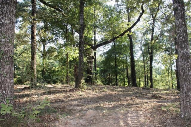 TBD Lunkers Cove Road, LEESVILLE, LA 71446 (MLS #152857) :: The Trish Leleux Group