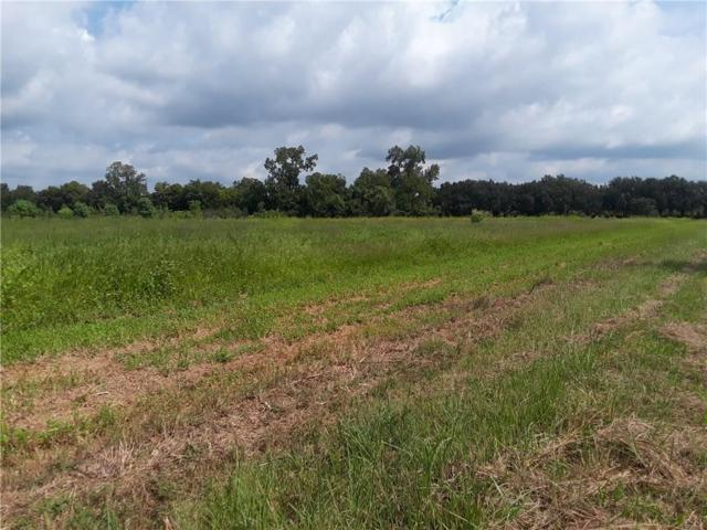 0 Winegart Lot 4 Lane, LECOMPTE, LA 71346 (MLS #147727) :: The Trish Leleux Group