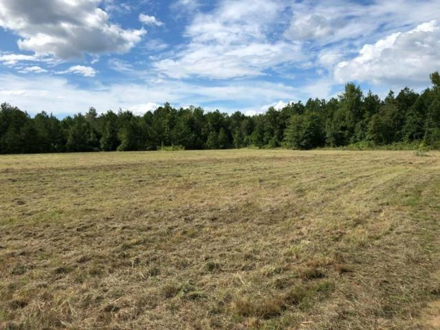 0 Manistee Road Lot 2, POLLOCK, LA 71467 (MLS #148220) :: The Trish Leleux Group