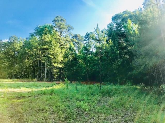 0 N Highway 165, POLLOCK, LA 71467 (MLS #146875) :: The Trish Leleux Group