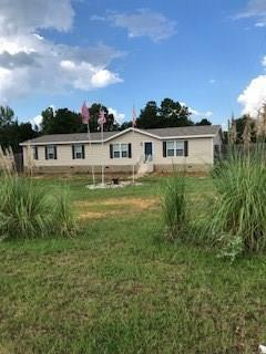 10740 Highway 28, BOYCE, LA 71409 (MLS #148386) :: The Trish Leleux Group