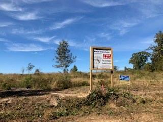 376(lot9) Peck Street, TOLEDO BEND, LA 71449 (MLS #150549) :: The Trish Leleux Group