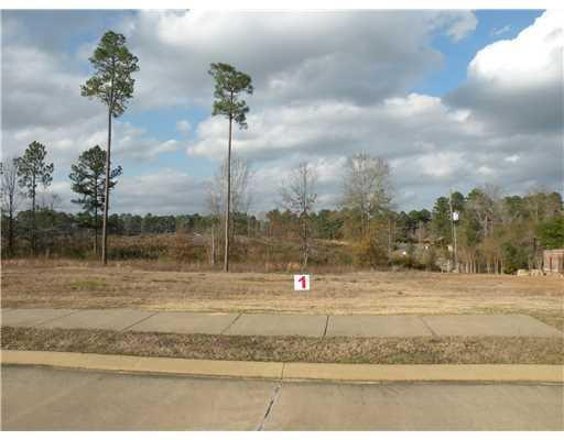 0 Richfield Loop (Lot 1) Corner, PINEVILLE, LA 71360 (MLS #C135070) :: The Trish Leleux Group