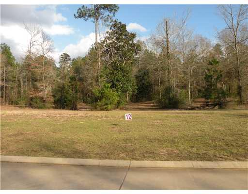 0 Richfield Place (Lot 12), PINEVILLE, LA 71360 (MLS #C135076) :: The Trish Leleux Group