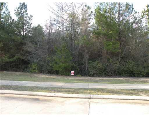 0 Sophia Way (Lot 20) Culdesac, PINEVILLE, LA 71360 (MLS #C135083) :: The Trish Leleux Group