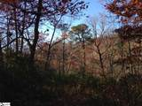 Panther Mountain Road - Photo 2