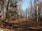 Fall Creek Road - Photo 4