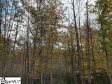 157 Glassy Falls Trail - Photo 23
