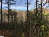 11 Misty Hollow Trail - Photo 3