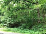00 Skyuka Mountain Road - Photo 1
