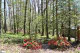 223 Doberman Trail - Photo 31