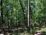 0 Trail Tree Drive - Photo 10