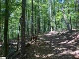 0 Trail Tree Drive - Photo 4